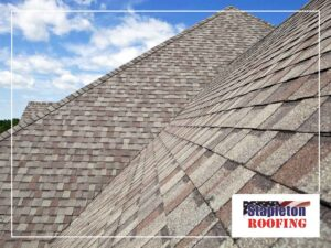 Dry Rot Roofing